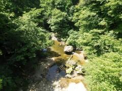 西根川の流れ