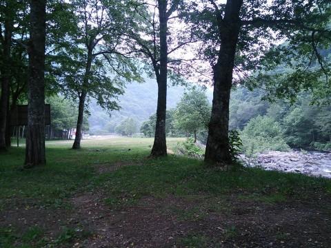 小雨がぱらつく朝の七入オートキャンプ場