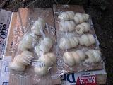 発酵の進んだパン生地