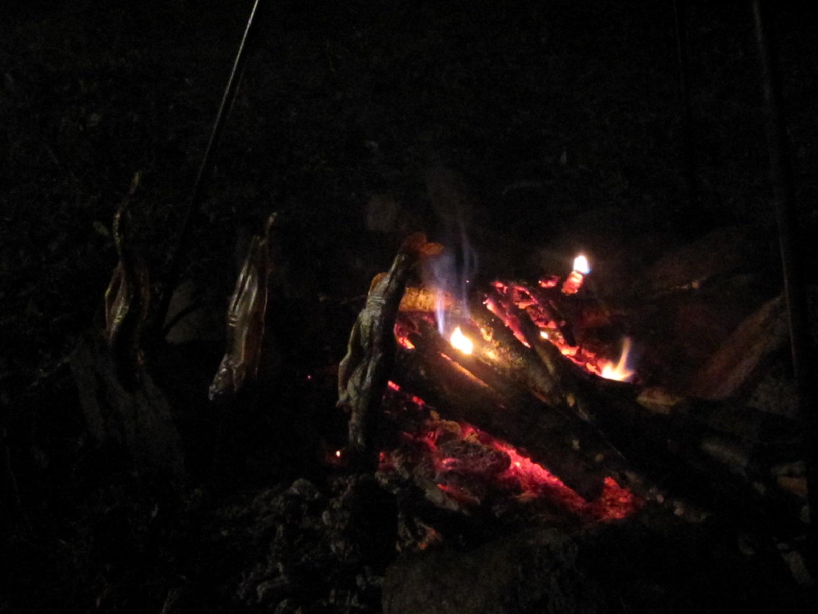 焚き火で岩魚を焼き枯らす