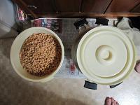 煮上がった大豆