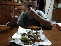 カニの唐揚げをバリバリ食べるコースケ