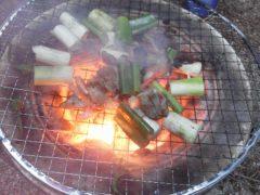 七輪で鶏肉とネギを焼く
