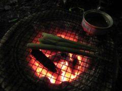 ネマガリタケを七輪でそのまま丸焼き