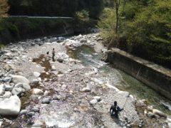 釣り人で賑わう大芦川の特別放流区域