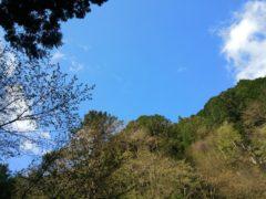 空は青空に