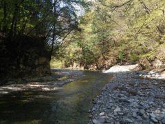 堰堤上部の流れ