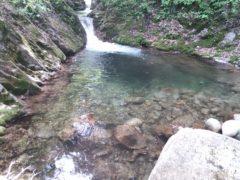 魚が溜まりそうな滝壺