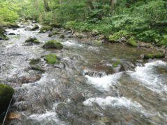 源流の流れ
