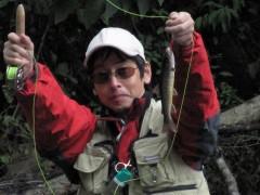 より糸のテーパーラインの特徴