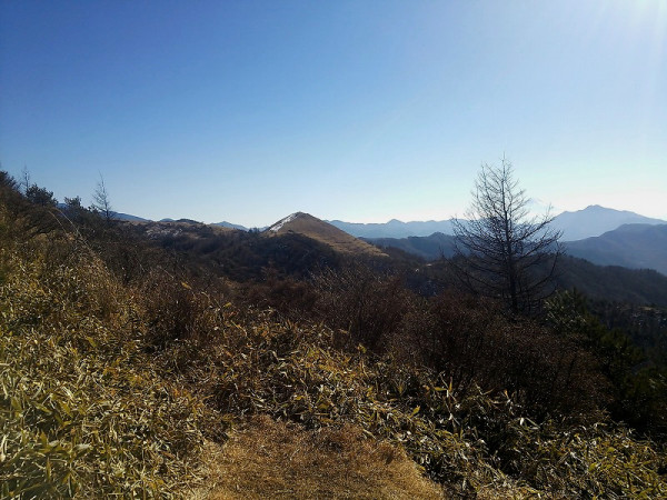 前方に見えるのが飯盛山