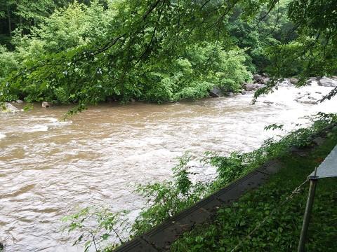 増水で実川の水はカフェオレ色