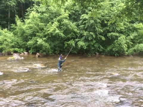 長いラインをたぐり寄せて魚を寄せる