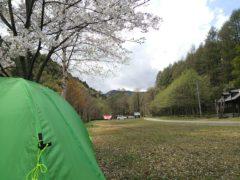 桜も散り始めた七入オートキャンプ場