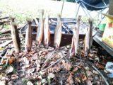 スノピの焚火台で串焼き魚を焼こうとすると長い串が必要