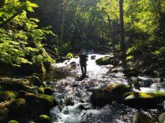 渓を遡行する