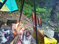 焚き火で魚を焼く