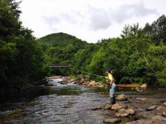 七入駐車場前の檜枝岐川の流れ