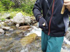 ゼンマイ胴エルクヘアを咥えた岩魚