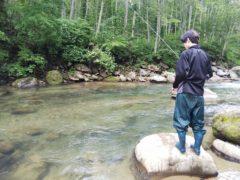 岩魚を見つけて粘るコースケ
