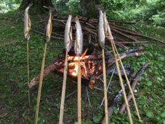 岩魚を焚き火で焼く