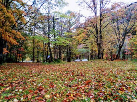 紅葉の七入オートキャンプ場