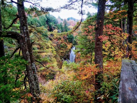 紅葉に包まれたモーカケの滝