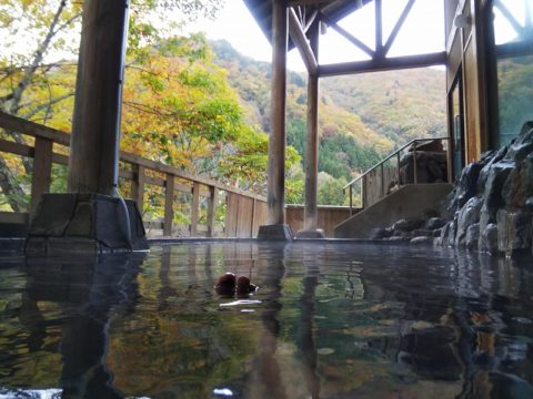 燧の湯の露天風呂からの紅葉