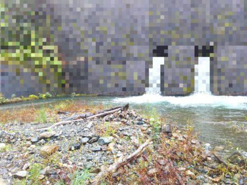 堰堤下のポイント