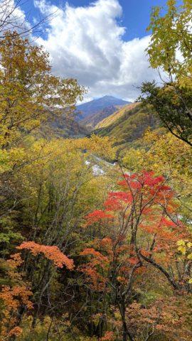 中土合公園展望台から望む燧ケ岳