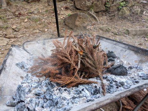 種火の残る焚火台に杉の落ち葉をくべる
