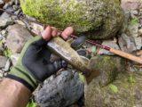 テンカラ竿と岩魚