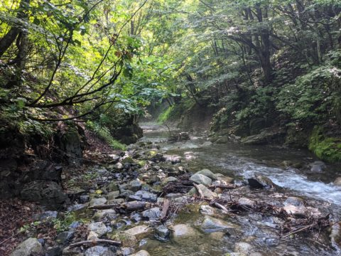 南会津の渓