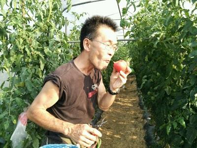 採ったトマトを頬張る